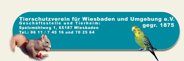 Vfh Wiesbaden